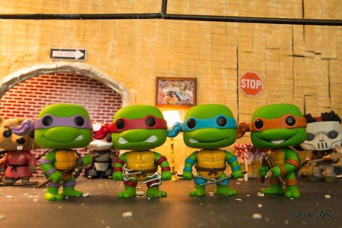 Teenage Mutant Ninja Turtles @ home