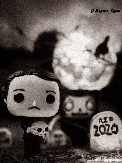 RIP 2020 Edgar Allan Poe
