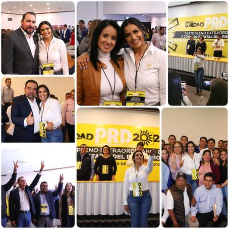 Diputados respaldan y celebran designación de Araceli Saucedo como Secretaria General del PRD