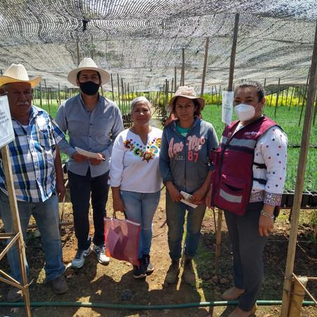 MARÍA CHÁVEZ SE REUNE CON PRODUCTORES DE ZIRACUARETIRO PARA PRESENTAR EJES DE SU AGENDA LEGISLATIVA