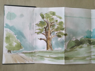 Petworth House. Another sketching adventure!