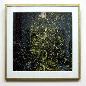 Papel dorado. Passepartout con ventana