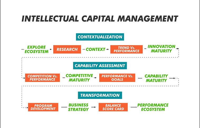 Hreemm's Digital Transformation Stratey - Intellectual Capital Management