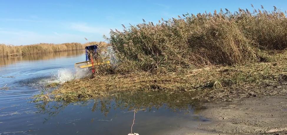 тестирование косилки на берегу водоема