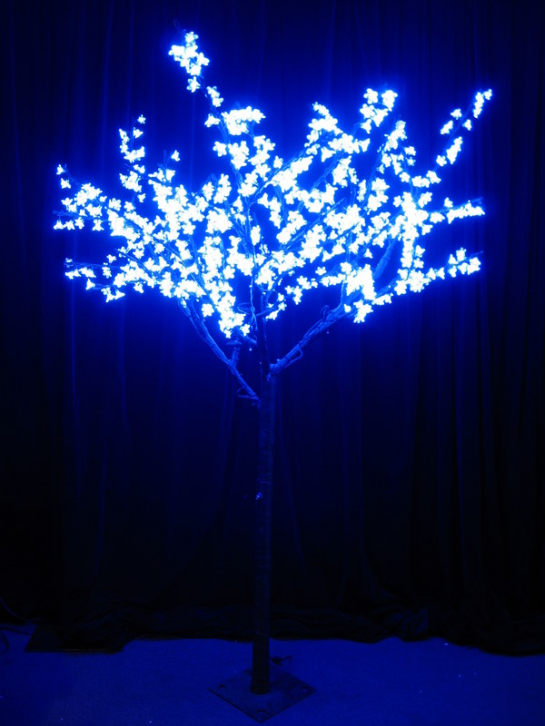 Blue Cherry Tree