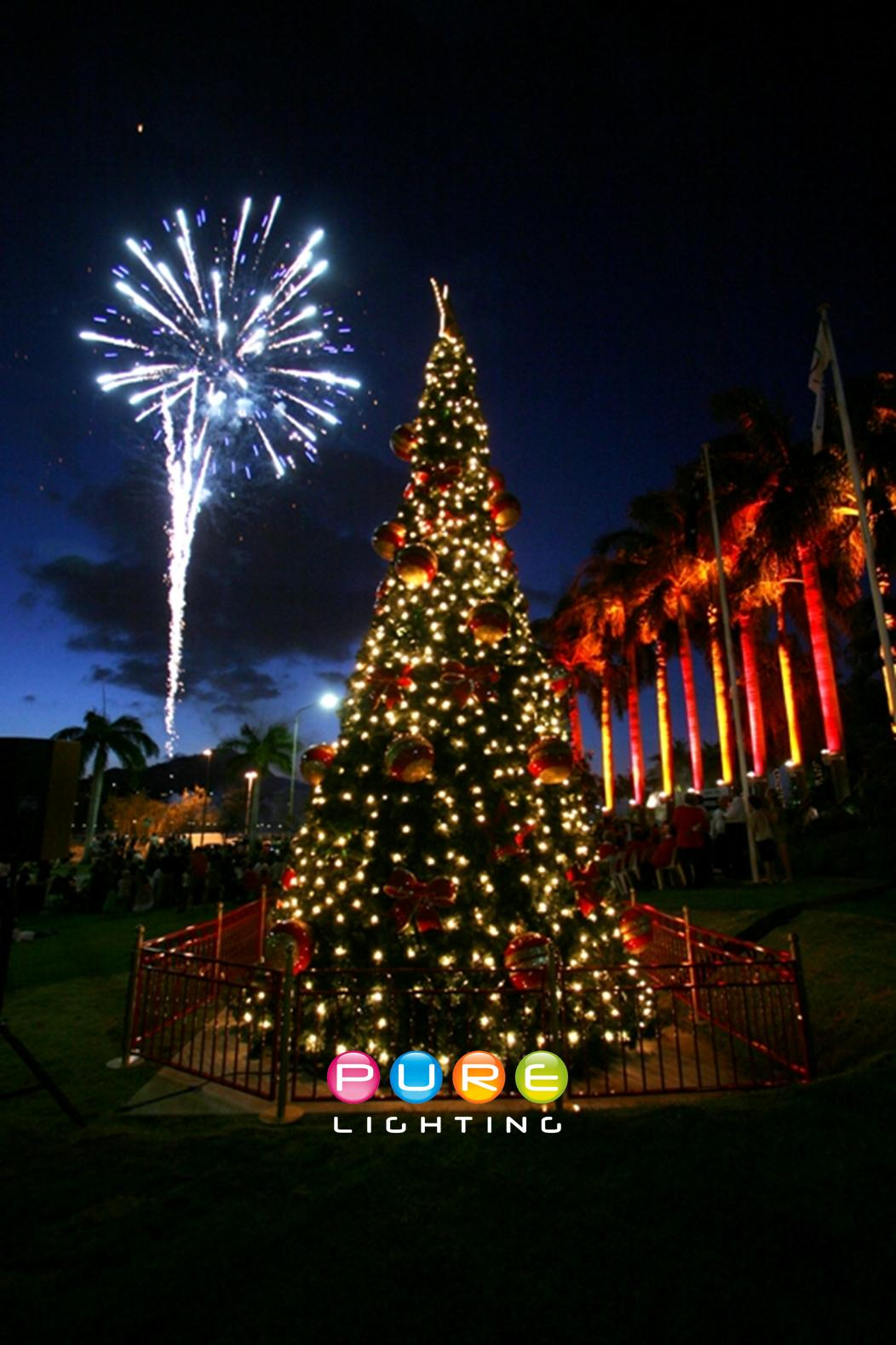 Traditional Christmas Tree.jpg
