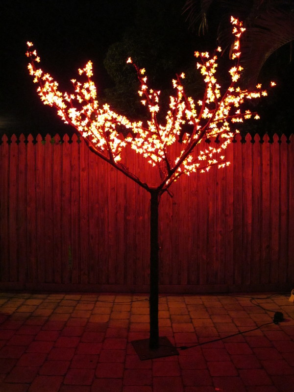 Red Cherry Tree