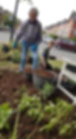 garden 23.jpg