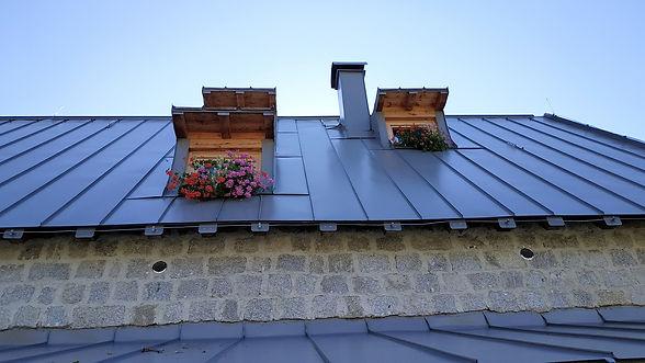 Blechdach mit Blumen.jpg
