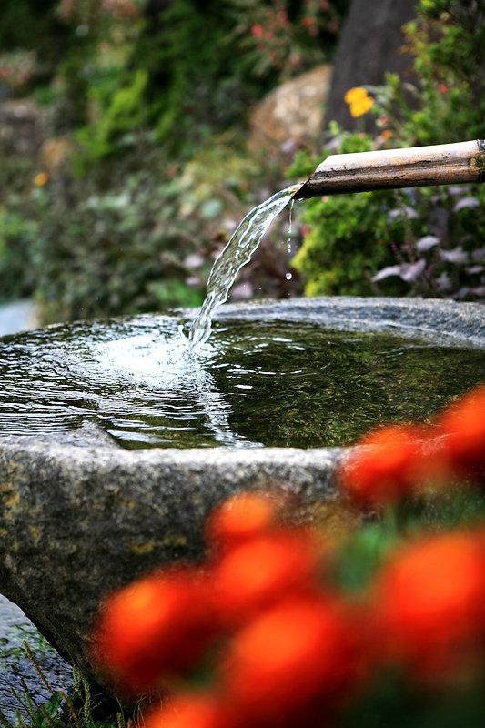 Dachwasser Brunnen.jpg