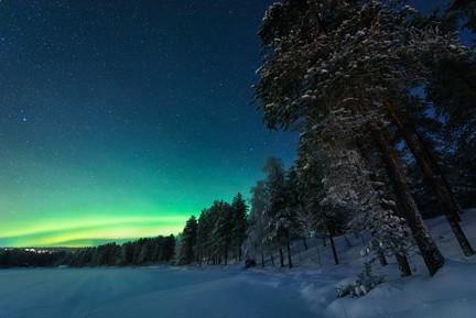 Lapland Trees Aurora