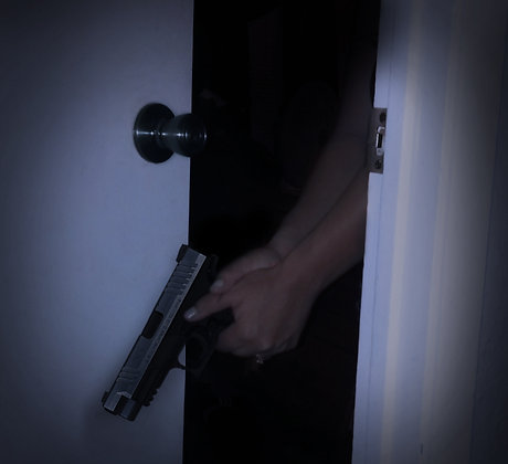 IN HOME DEFENSE
