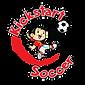 Youth soccer in franklin, tn