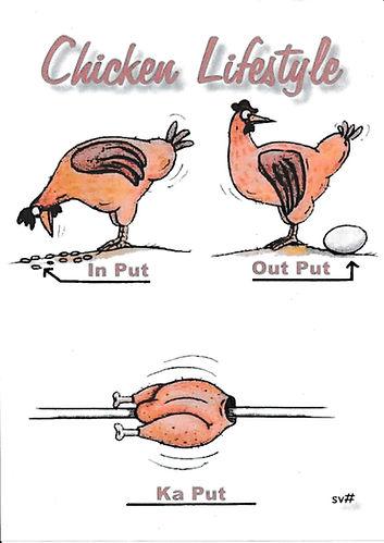 Chicken lifestyle.jpg
