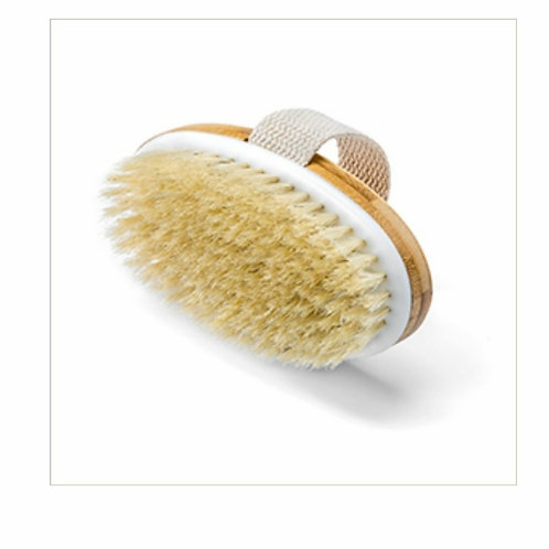 Oval Dry Body Brush