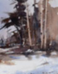 Bev Boren Winter's Blanket.jpg