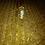 Thumbnail: AMPOLLAS RECONSTRUCTORAS ROG LINE