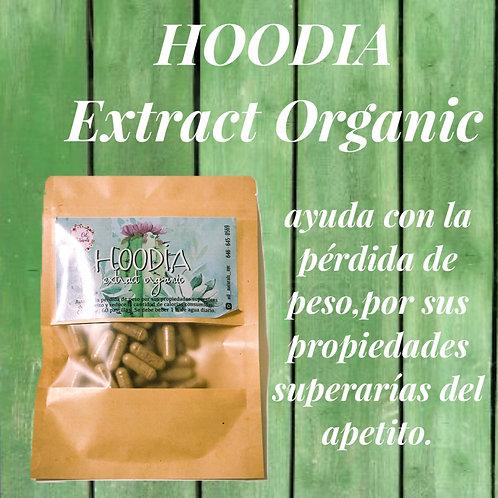 HOODIA EXTRACT ORGANIC