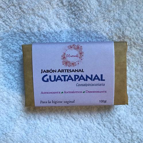 JABÓN DE GUATAPANAL