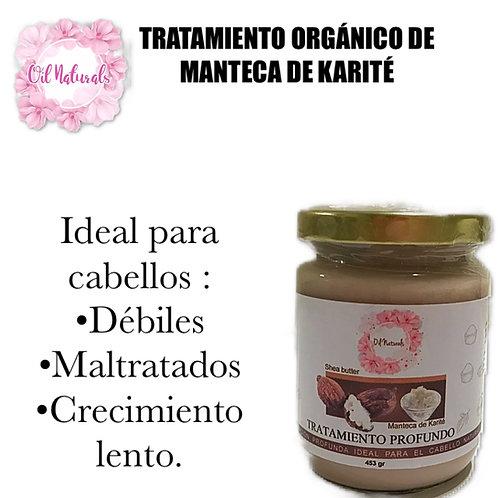TRATAMIENTO ORGÁNICO DE MANTECA DE KARITÉ