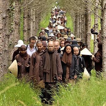 Plum-Village-Son-Ha-2014-Legendary-path.