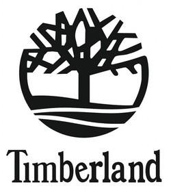 Timberland.jpeg