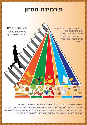 פירמידת מזון 100X70.jpg