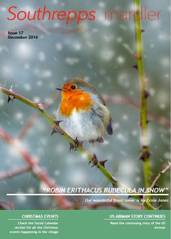 Mardler - Issue 17 - December 2016