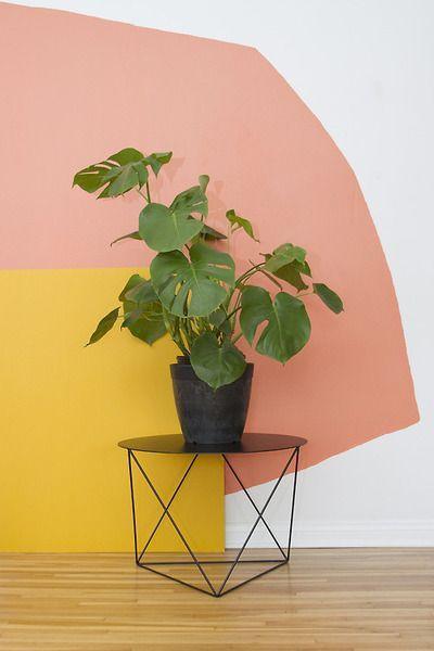 לפני שמטפסים על הקירות: רעיונות לשדרוג הבית עם צבע בלבד