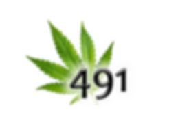 491 logo.jpg