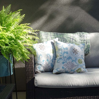 Green fern and a comfortable sofa