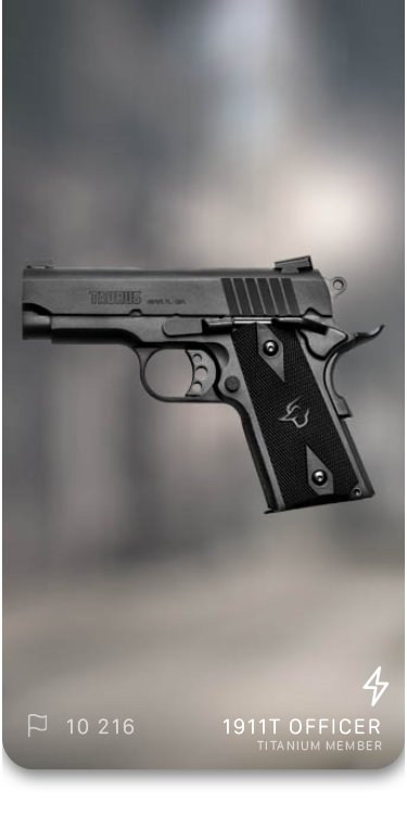 Gun1.png