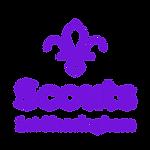 Hensingham Logo.png