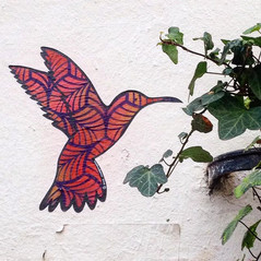 Hummingbird of Montmartre