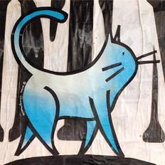 Blue Skies Cat