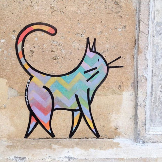 Rainbow Zig Zag Cat