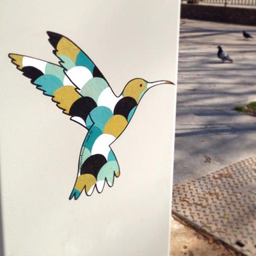 Scales hummingbird