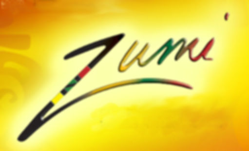 Zumi Collection LLC