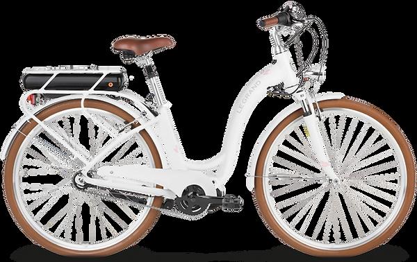 Rower-Elektryczny-Szczecin