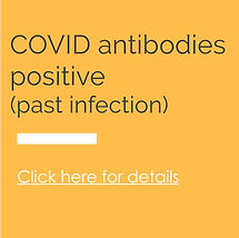 Covid-Antibodies.jpg