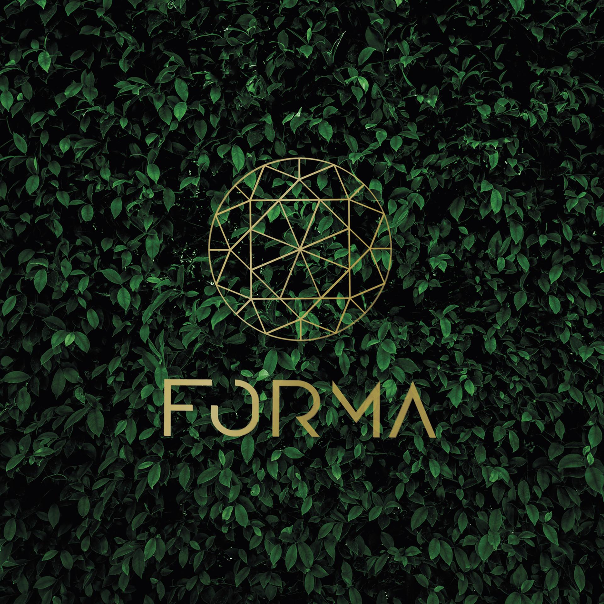 forma-vefur-HH.jpg