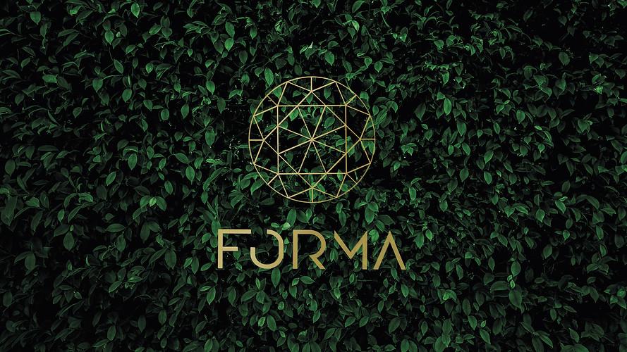 Stofan / Forma