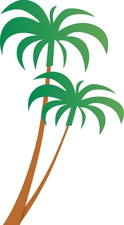 Palmen.png