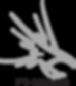 FHSMB_logo_big.png