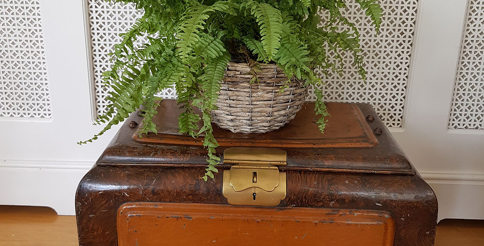 Vintage Iron and Brass Chest /Occasional Table