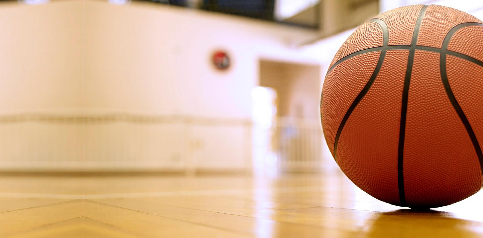 pelota basquet.jpg