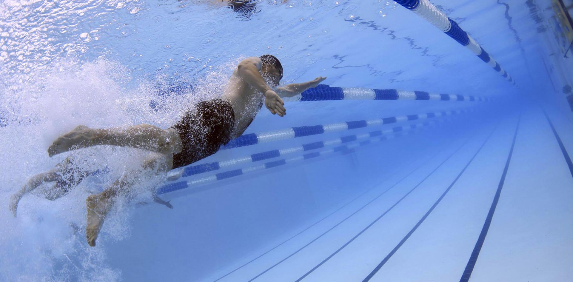 swimmers-79592.jpg