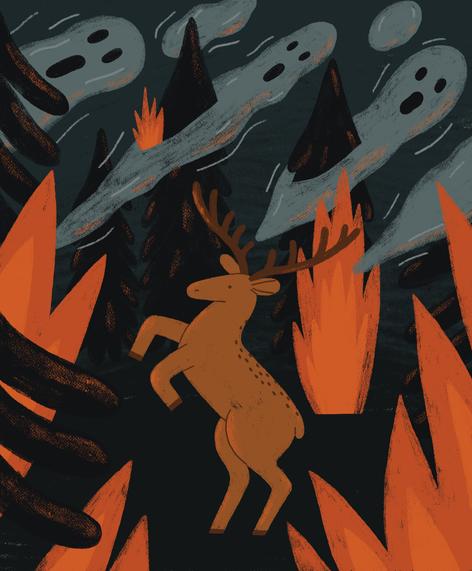 Siberia burns