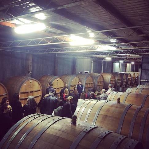 Tyrells winery tour