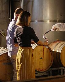 Wine_Tasting_since1972.jpg